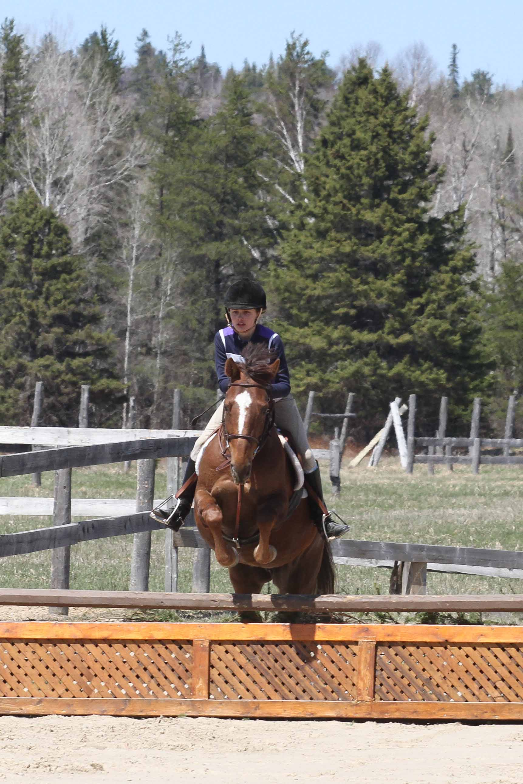 Foothills Farm Schooling Show